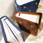petits codices 2012